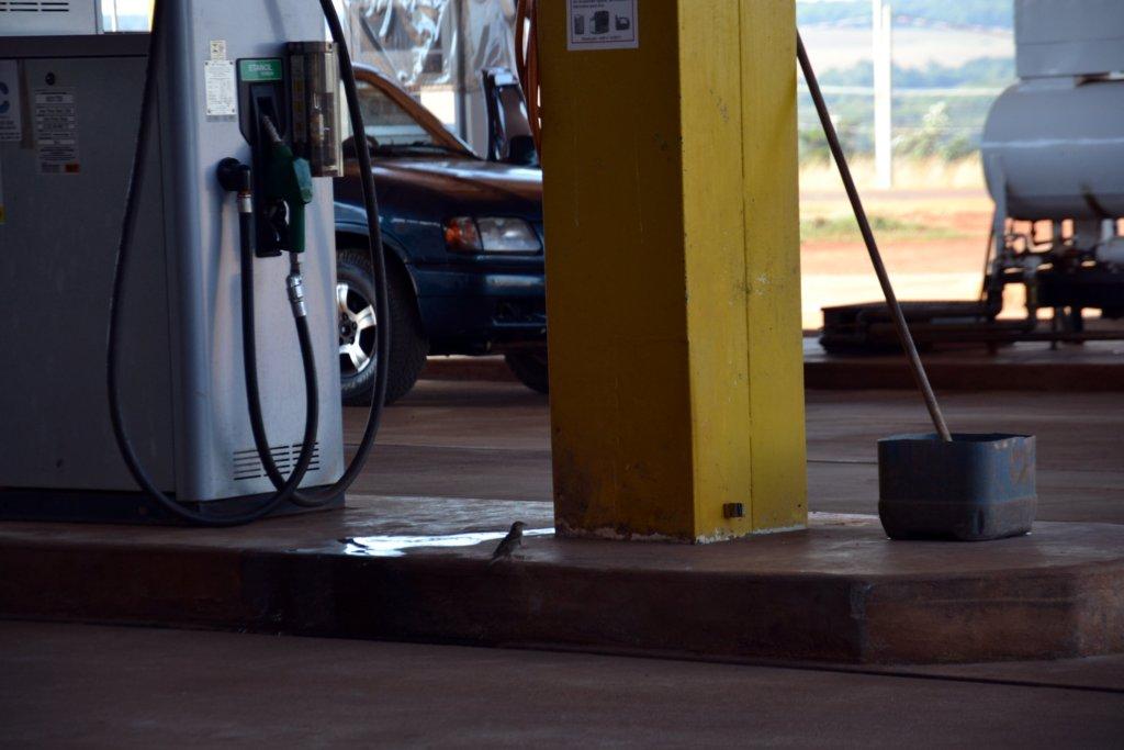 Tankstelle irgendwo in Mato Grosso do Sul, Foto: Sylvia Montag
